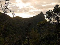 Cristo Redentor - Corcovado - Costas - Floresta - Floresta da Tijuca - Natureza - Rio de Janeiro - Brasil - Brazil