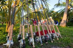 Nice collection of saltwater rods and reels