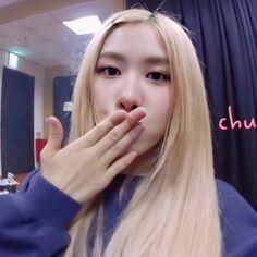 Yg Entertainment, South Korean Girls, Korean Girl Groups, Rose Queen, Rose Icon, Rose Park, Black Pink Kpop, Blackpink Photos, Rose Wallpaper