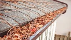 Gutter Cleaning Step By Step Guide For Homeowners Gutter Cleaning Cleaning Gutters Gutters Home Maintenance