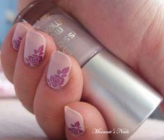 Purple roses on pink