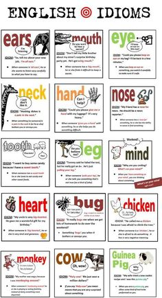 Idioms using animals & body parts