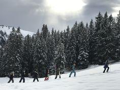Snowshoe, Adventure, Mountains, Nature, Travel, Outdoor, Outdoors, Naturaleza, Viajes