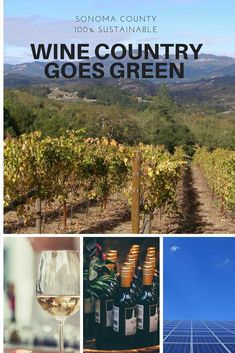 Wine Country Goes Green