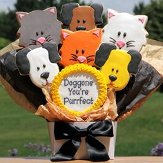 Doggone You're Purrfect Bouquet of Cookies | Purchase from Gourmet Cookie Bouquets  ( http://www.gourmet-cookie-bouquets.com/doggone_youre_purrfect_bouquet_of_cat_dog_cookies.html)
