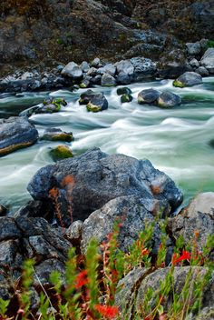 Blossom Bar, Rogue River, Southern Oregon . If you have rafted the Rogue River you always anticipate the thrill of this particular rapid.