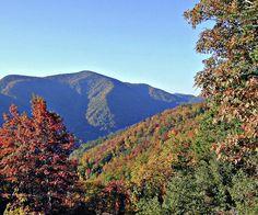 Mountains near Asheville, NC