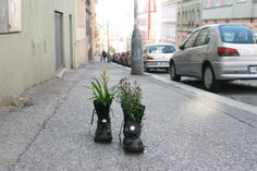 Guerrilla gardening in Prague