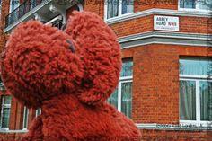 Marco Polo en Abbey Road, London, UK. Como The Beatles