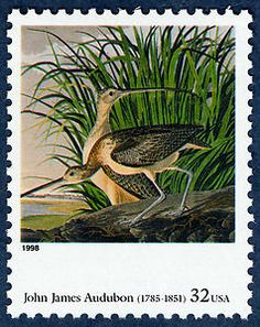 """US Stamp - """"Long-billed Curfew, Numenius Longrostris"""" by John James Audubon; an American Art Issue 1998 stamp. Commemorative Stamps, Birds Of America, John James Audubon, Wildlife Paintings, Fauna, Stamp Collecting, Mail Art, Postage Stamps, American Art"""