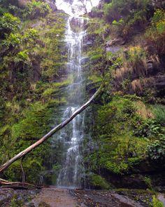 Water fall in Lorne  #lorne #australia #waterfall #getlost #nature by latasha_harry http://ift.tt/1IIGiLS
