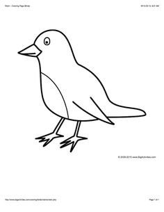 100 free bird coloring pages color in this picture of a robin and