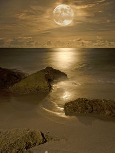 Face your fears and doubts, and new worlds will open to you...Orange Full Moon