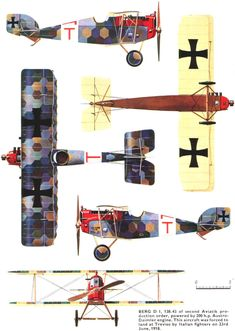 Österreichische Aviatik (Berg) D.I ' Austro-Hungarian fighter, Italian front 1918 Luftwaffe, Airplane Painting, Photo Avion, Aircraft Painting, Vintage Airplanes, World War One, Fighter Aircraft, Aviation Art, Model Airplanes