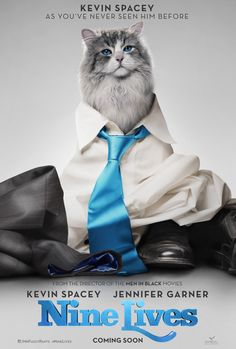 The best afternoons' entertainment I've had in a while. Just loved it. The cat moves are just brilliant. Kevin Spacey's voice acting was clever, understated and brilliantly comedic, but Christopher Walken stole the show as Mr Perkins of Purr Kins. I'd have no objection to watching it again!