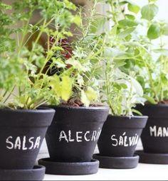Dicas, by Jardineiro Fiel, para cultivar uma horta orgânica caseira.   #yeswedding #sweethome #docelar