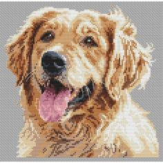 Golden retriever cross stitch chart www.jbcrossstitch.com458 × 458Hae kuvan perusteella Golden retriever (chart download)