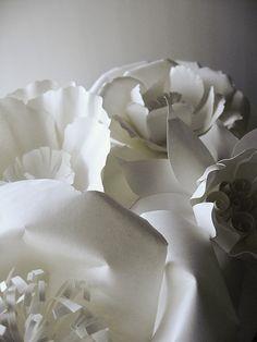 Papercut Garden   Flickr - Photo Sharing!