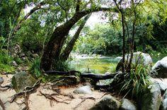 Mossmand Guage, Queensland