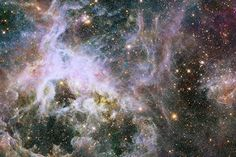 This new Hubble image shows a cosmic creepy-crawly known as the Tarantula Nebula in infrared light. This region is full of star clusters, glowing gas, and thick dark dust. Image released Jan. 9, 2014. http://www.space.com/24246-tarantula-nebula-hubble-telescope-photos-aas223.html?cmpid=518257