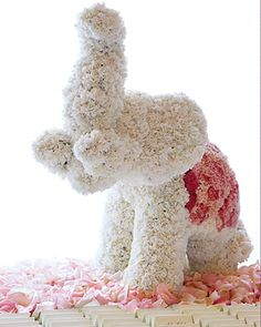 Love this whimsical elephant centerpiece, made of pink and white carnations  Leslie would love!