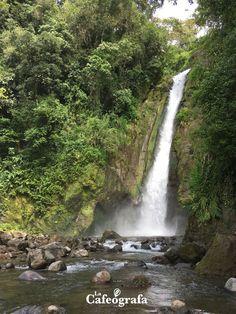 Visitamos Aquiares, una finca de café, un bosque, un pueblo.  #NuevoPost #Turrialba #CostaRica #CafédeCostaRica Costa Rica, Waterfall, Outdoor, Coffee Store, Good Coffee, Woods, Mugs, Plants, Outdoors
