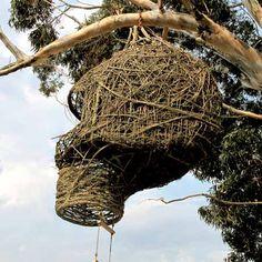 ALLPE Medio Ambiente Blog Medioambiente.org : Nidos para humanos