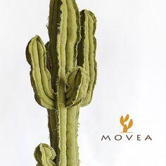 Movea Design (@movea.design) | Instagram photos and videos