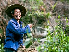 This is a lovely tea farmer we met in our China Tea Tour.