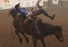 Jesse Wright is bucked by his horse during the saddle bronc riding event at the final event of the 2014 San Angelo Stock Show and Rodeo.
