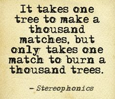 A Thousand Trees - Stereophonics has allways and will allways be one of my favorite songs! Music X, Music Words, Music Love, Music Quotes, Music Lyrics, Great Song Lyrics, Rock Songs, Sing To Me, Kinds Of Music