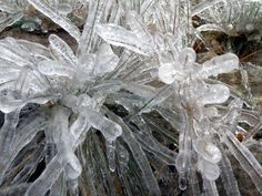 Ice Storms are beautiful and dangerous.