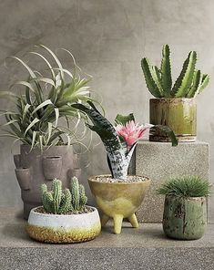 statement tripod. Terracotta planter stands out on three chunky legs, each applied by hand. Wide open on top, shape tapers down to the tri-footed base. Glazed over in yellow/green, piece shows like functional art. Our favorite. CB2 exclusive.