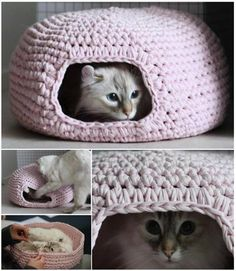 Grab your crochet hook and make one of these snuggly homes for your little kitties. They'...
