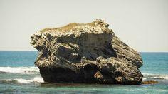 Rottnest Island! WA ........................................................................................... #austraila #westernaustralia #WA #westcoast #seewa #island #ocean #blueskies #clearwater #sunshine #goodday #tourist #travel #traveling #explore #picoftheday #holidays #landscape #instalike #perth #nature #outdoors #beach #sand #peace #colour #snorkeling #nature #rottnestisland #rottnest #photography by blakey231 http://ift.tt/1L5GqLp