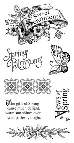 Graphic 45 - Sweet Sentiments - Cling Stamp 1