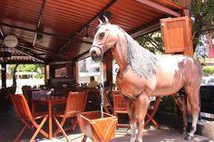 Picanha-do-Cowboy-8