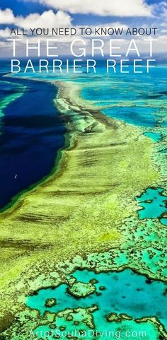 interesting facts about Great Barrier reef | Australia | scuba diving | coral | conservation | ocean |