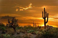 Arizona Photo Peralta Sunset Glory - Fine Art Matted 13 x 19. $89.00, via Etsy.
