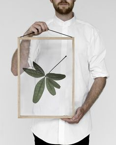 Shop the popular 'Floating Leaves' series by Paper Collective, Moebe and Norm Architects at THE POSTER CLUB — Worldwide shipping! Design Shop, Wall Design, Diy Originales, Copenhagen Design, Leaf Projects, Free Frames, Floating, Leaf Prints, Art Prints