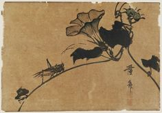 Keisai Eisen: Grasshopper & morning glory - Museum of Fine Arts