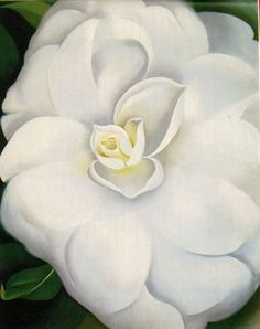 Georgia O'Keefe - White Camelia