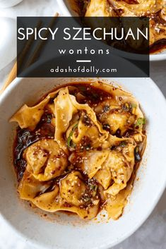 Spicy Szechuan Wontons in Spicy Szechuan Sauce - a dash of dolly Wonton Sauce Recipe, Wonton Recipes, Pork Recipes, Veggie Recipes, Asian Recipes, Asian Foods, Cooking Recipes, Healthy Recipes, Chinese Recipes