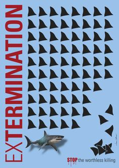 #ExTermination #STOP the worthless killing #Shark