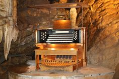 Yes, that is a working organ.