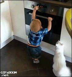 オーブンに触ろうとする子供をたしなめるネコ。マジ賢すぎ