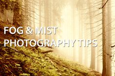 Tips for getting great photos in foggy or misty conditions, and when and where fog is most likely to occur.