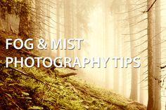 Fog & Mist Photography Tips - Discover Digital Photography