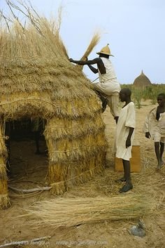 Men making a thatch hut in Kanem, Chad, Africa.  The Kanembu house is made of thatch from millet straw.