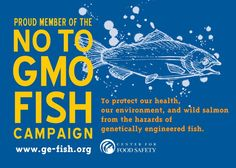 35 days left till the deadline. Learn more:  http://foodintegritynow.org/2013/02/20/ge-salmon-is-the-world-ready-for-frankenfish/   Comment NOW: Here is a direct link to the FDA to let your voice be heard: http://www.regulations.gov/#!submitComment;D=FDA-2011-N-0899-0685  or visit www.ge-fish.org The Center for Food Safety's True Food Network  Docket for all petitions on the subject before the FDA: http://www.regulations.gov/#!docketDetail;D=FDA-2011-N-0899